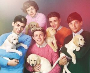 You're going to need more puppies and cable knit boys!