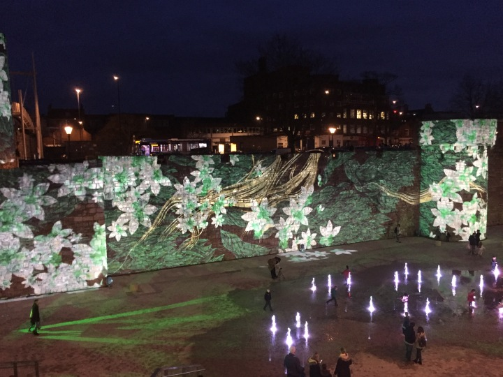 If you missed it…Southampton's Festival ofLight